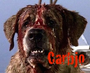 carbjo_dog