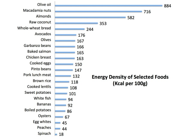energy_density_of_selected_foods