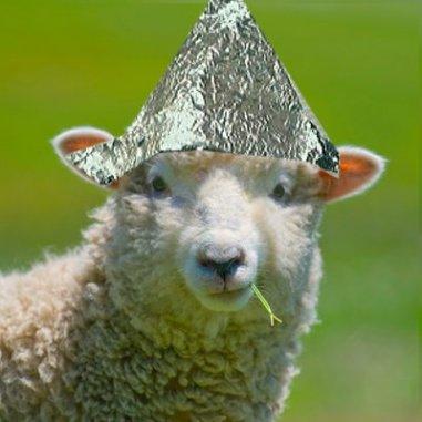 tinfoil_sheep